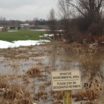 No Mow zone completed flooded with rain and snow melt run-off from athletic fields behind